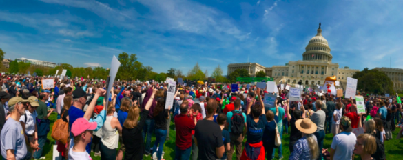 Washington DC Tax March attendees on US Capitol grounds April 15 2017 via TrumpTaxMarch on Twitter