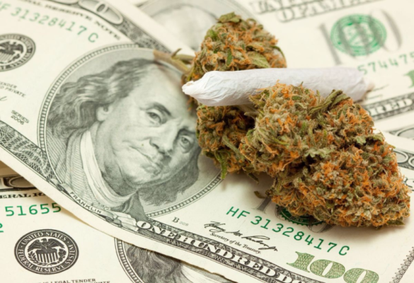 Cannabis-money_GreenerCulture
